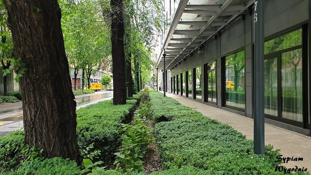 tereny zielone w Mediolanie