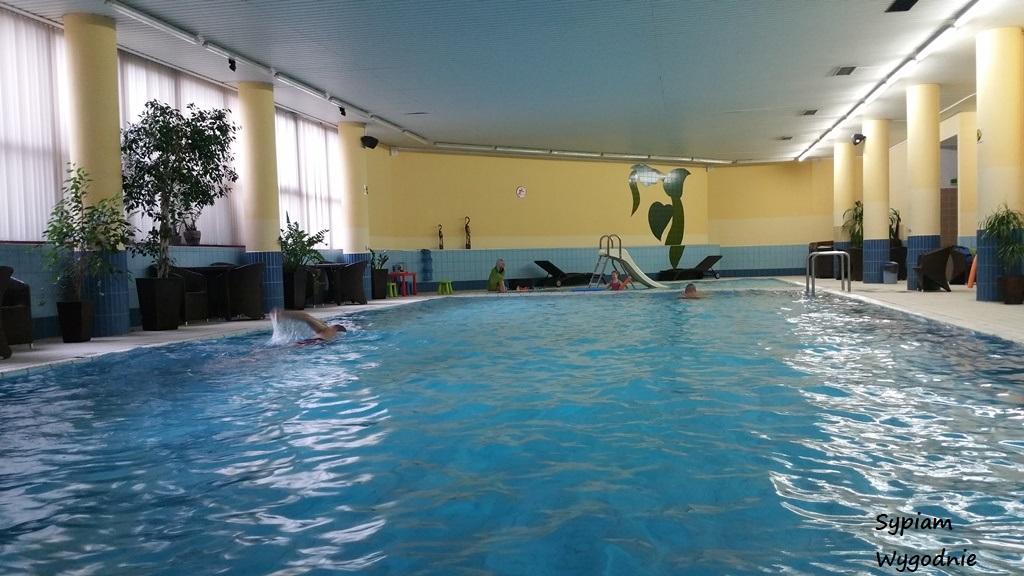 Hotel Mercure Jelenia Góra - basen