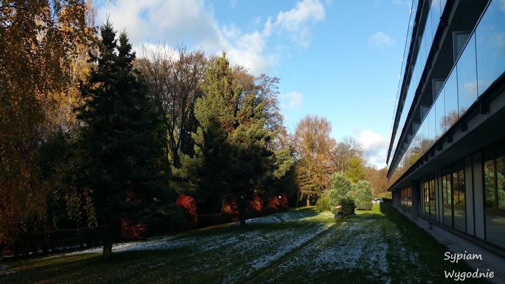 Mercure Gdańsk Posejdon - ogród